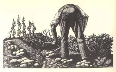Seamus heaney digging essay